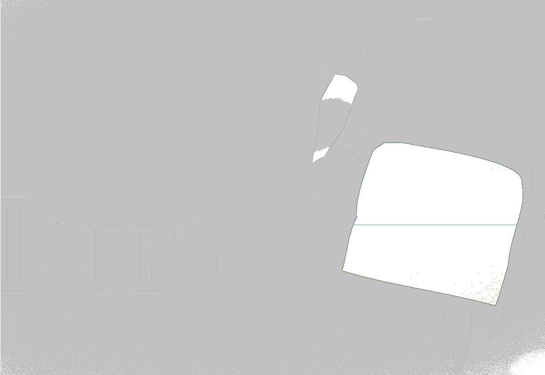 TZI-LOGO-ISTRA